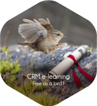 CRM training center : Innovating and effective training courses