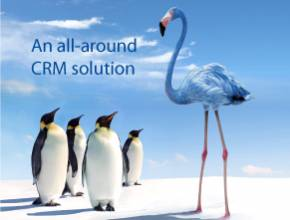 CRM Software :  A all-around CRM Solution