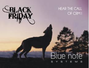 Black Friday 2017 :  Hear the call of CRM