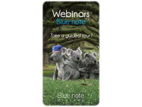 Webinar Blue note